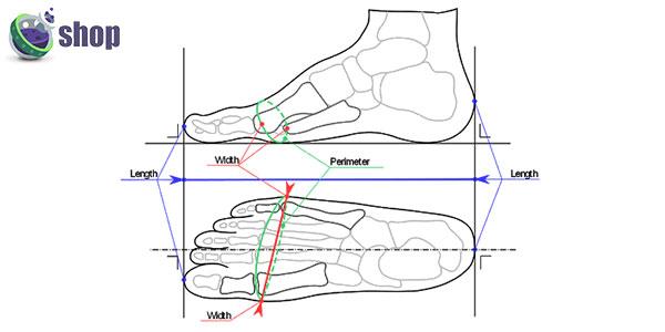 عرض و طول کفش