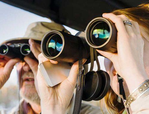 دوربین شکاری-خرید از 10برند برتر دوربین دو چشمی